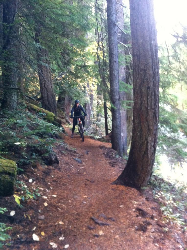 Mckenzie River Trail - Suggestions Needed-img_0078.jpg