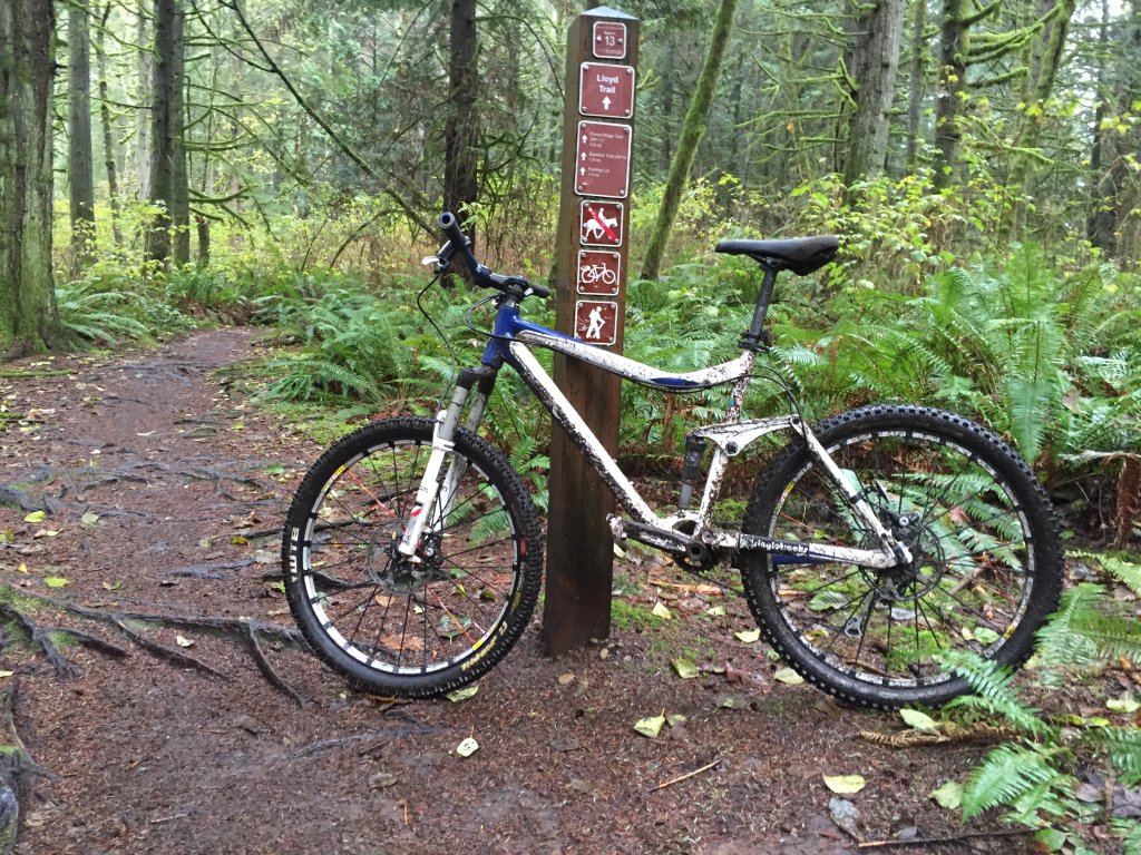 did you ride today?-img_0079.jpg