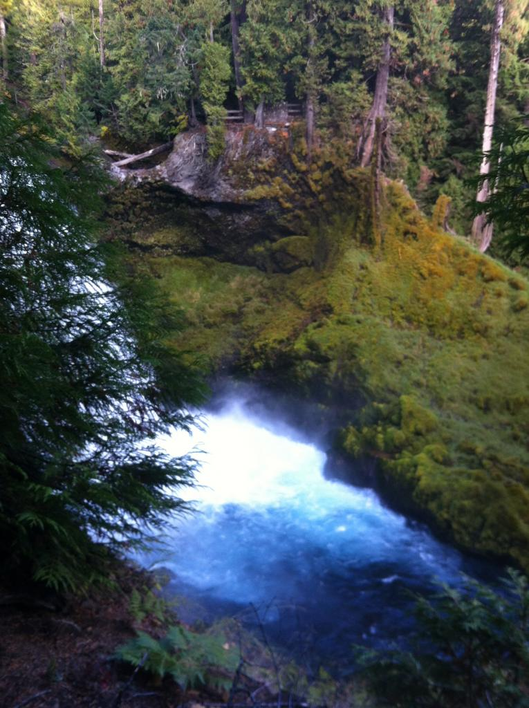 Mckenzie River Trail - Suggestions Needed-img_0085.jpg