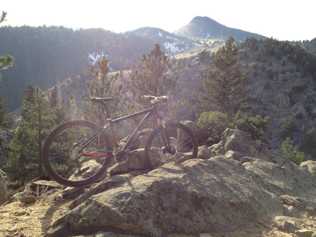 New Bikesdirect Gravity 29Point1?-img_0086.jpg