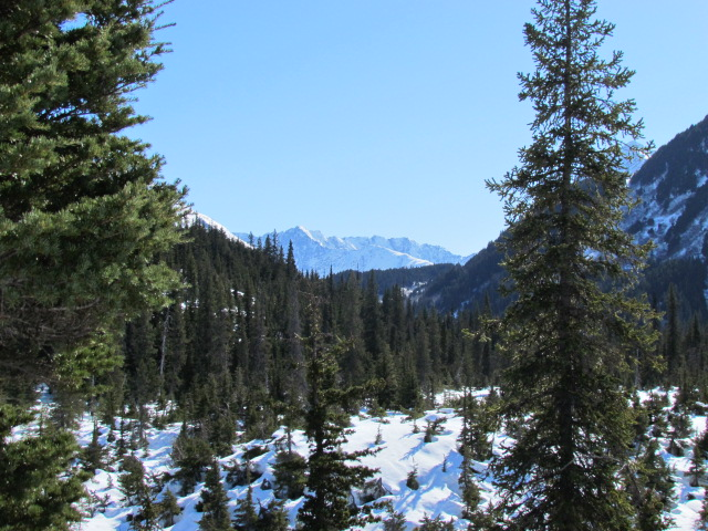 Johnson's Pass-img_0090.jpg