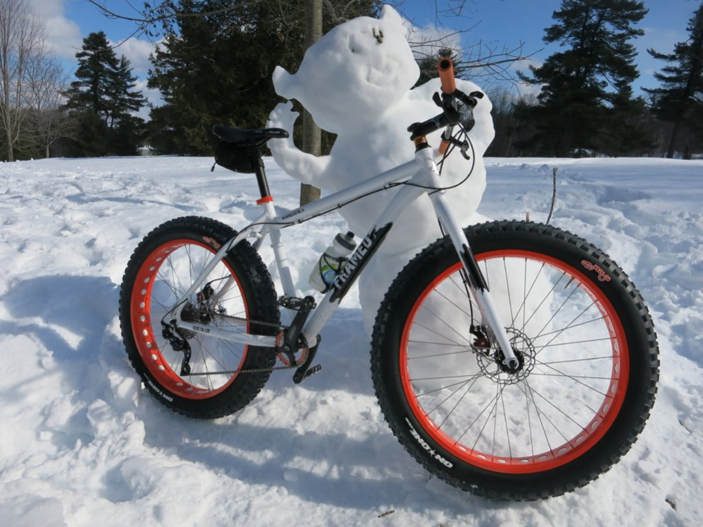 The Minnesota 1.0 and 2.0 Fatbikes-img_0132.jpg