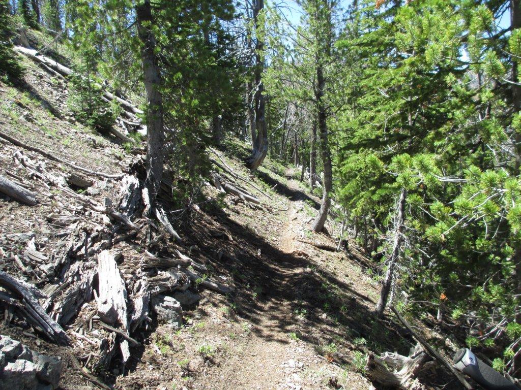 Cicumnavigation of Woods Peak-img_0137.jpg