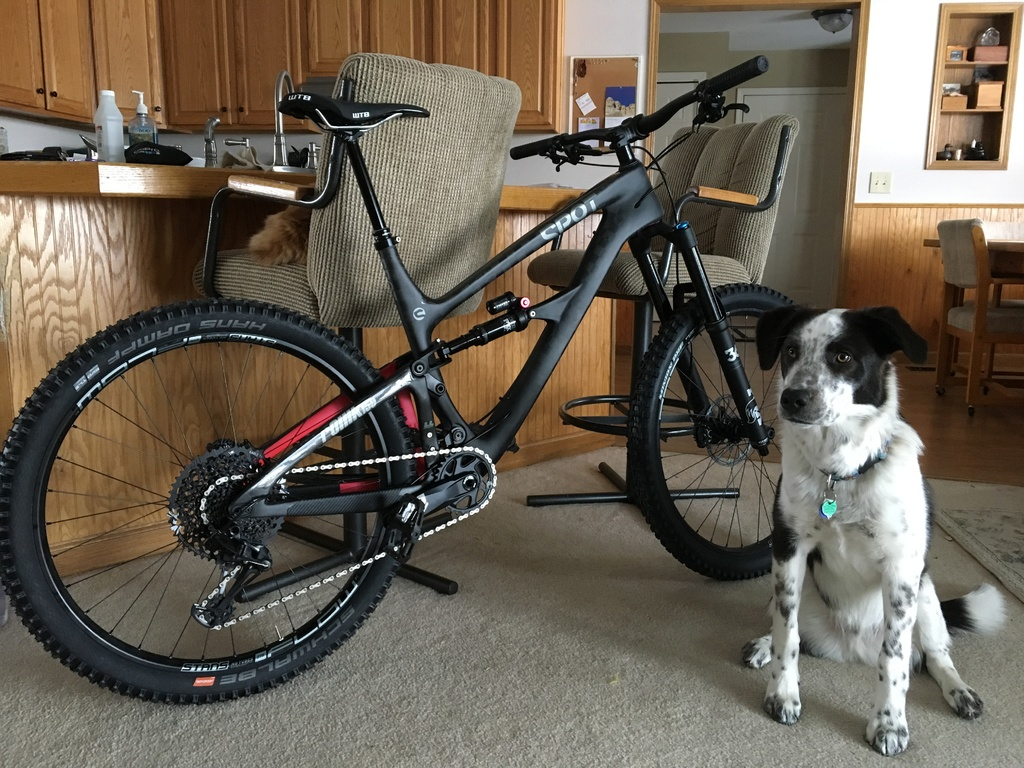 Show us your 2019 bike that you just acquired!!-img_0138.jpg