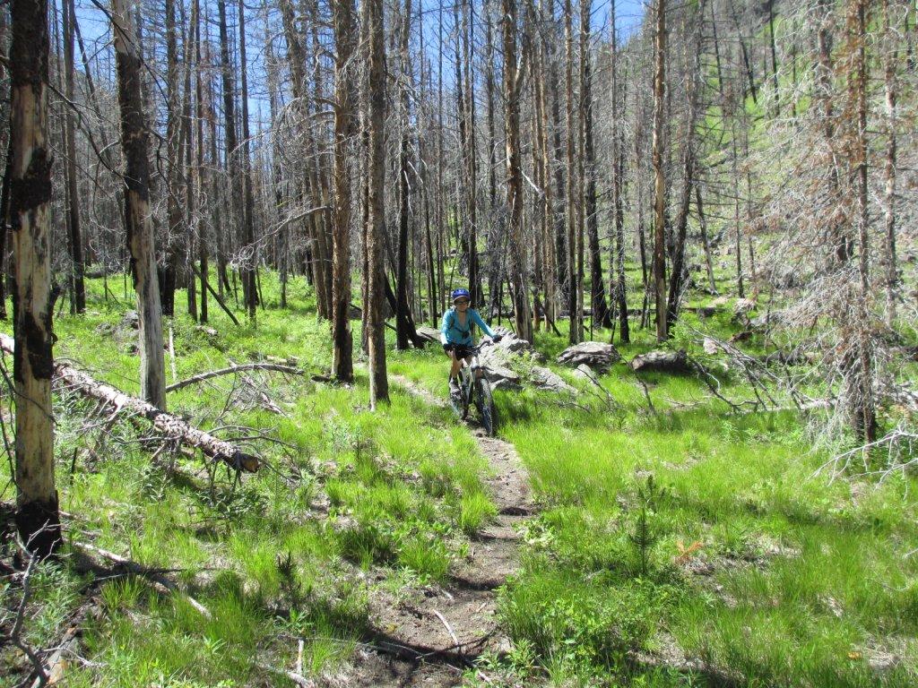 Cicumnavigation of Woods Peak-img_0149.jpg