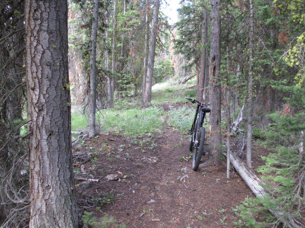Thunder Mtn-Rattlesnake Ridge Loop, Salmon area.-img_0198.jpg