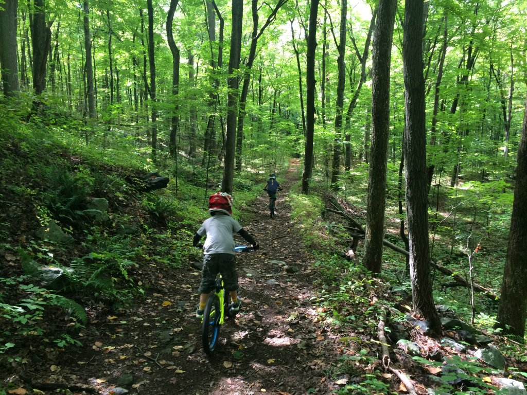 Kid's Mountain or Road Bike Ride Picture Thread-img_0202.jpg