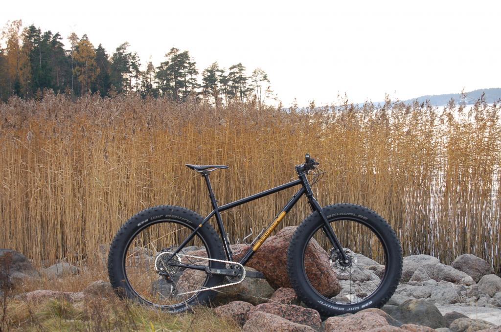Your bikes....?-img_0202.jpg