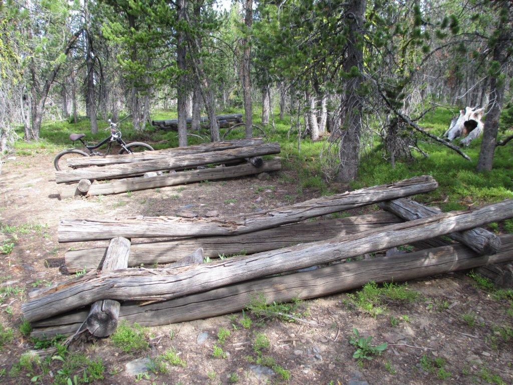 Thunder Mtn-Rattlesnake Ridge Loop, Salmon area.-img_0203.jpg