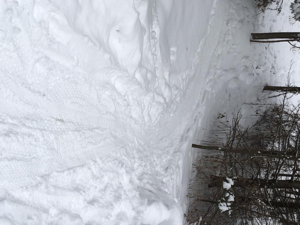(Winter) Trail Conditions-img_02052.jpg
