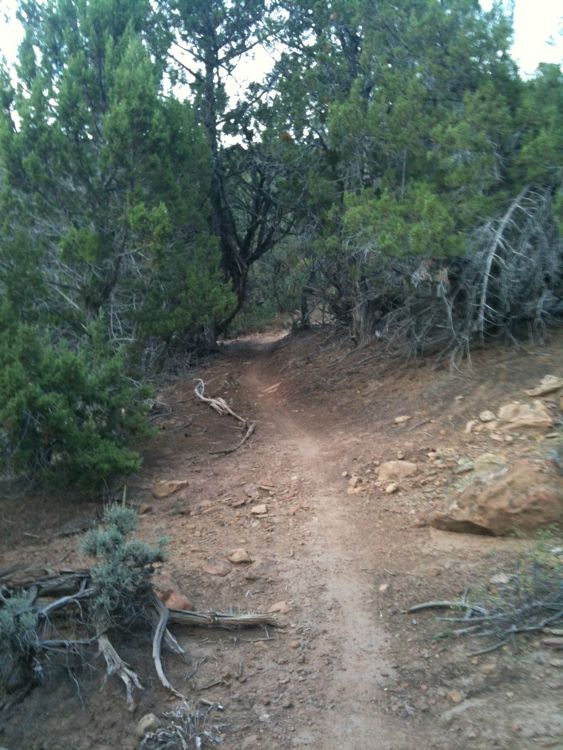 Paonia Trails-img_0208.jpg