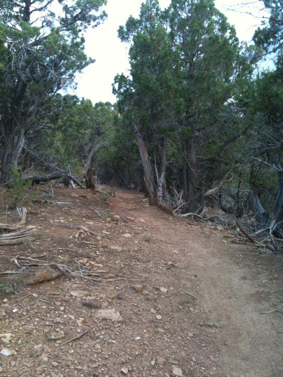 Paonia Trails-img_0210.jpg