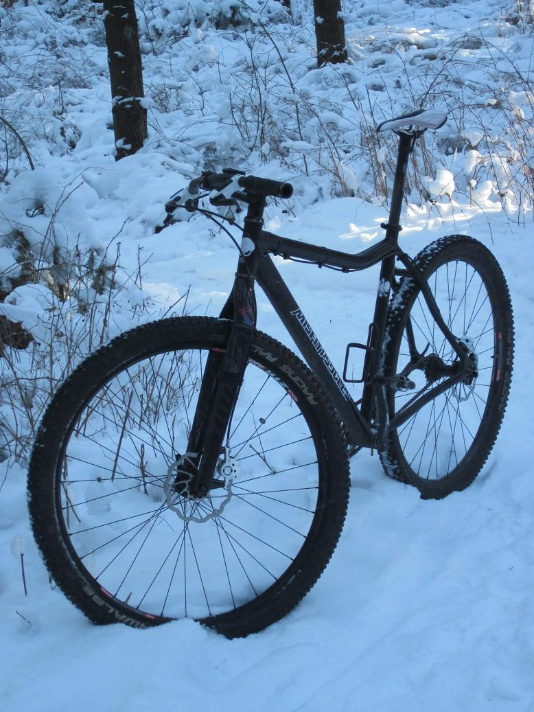 Post pics of your FULLY RIGID SS 29er-img_0210large.jpg