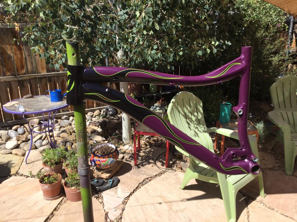 Anybody use Spray.Bike to paint their frame?-img_0213.jpg
