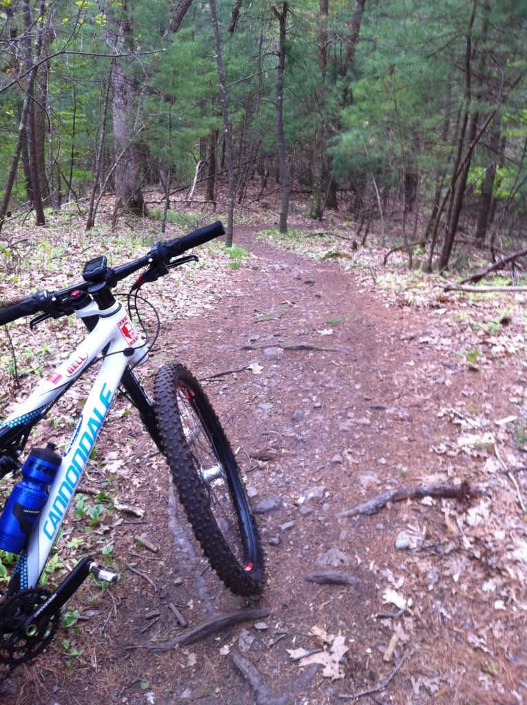 MA Trails Picture Thread-img_0221.jpg