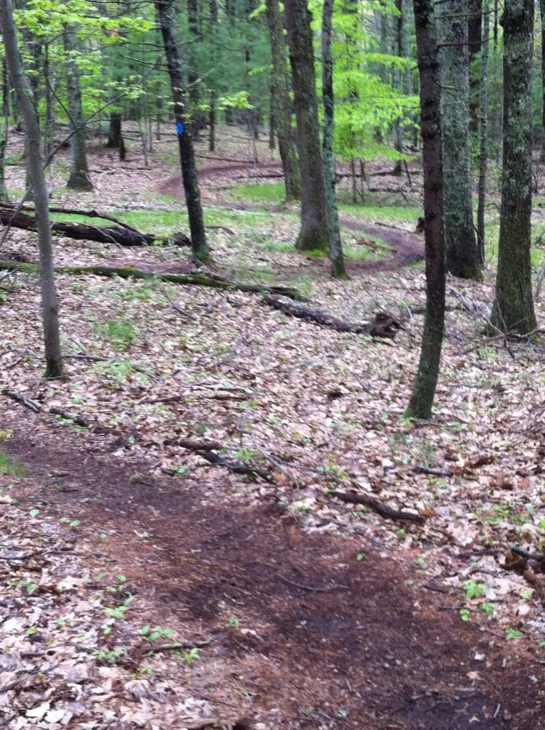 MA Trails Picture Thread-img_0228.jpg