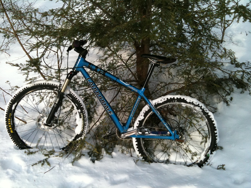 The Trails are Covered.....Post your snow..pics-img_0242.jpg