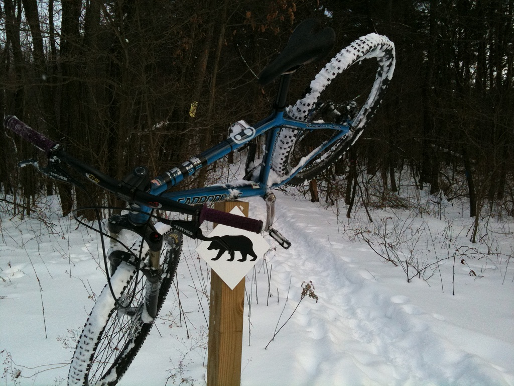 The Trails are Covered.....Post your snow..pics-img_0246.jpg