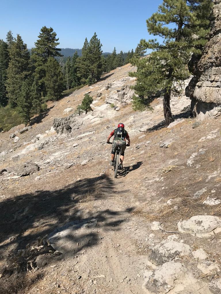 Bear Valley mountain bike festival, Sept 8,9-img_0249.jpg
