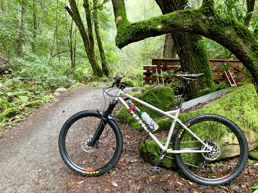 Show us your 2019 bike that you just acquired!!-img_0292.jpg