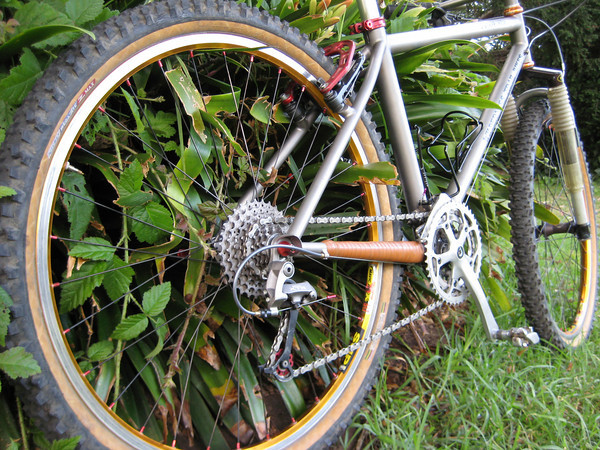Best chainstay protection?-img_0293-m.jpg