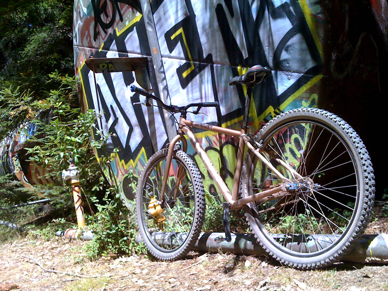 Post Pictures of your 29er-img_0294.jpg