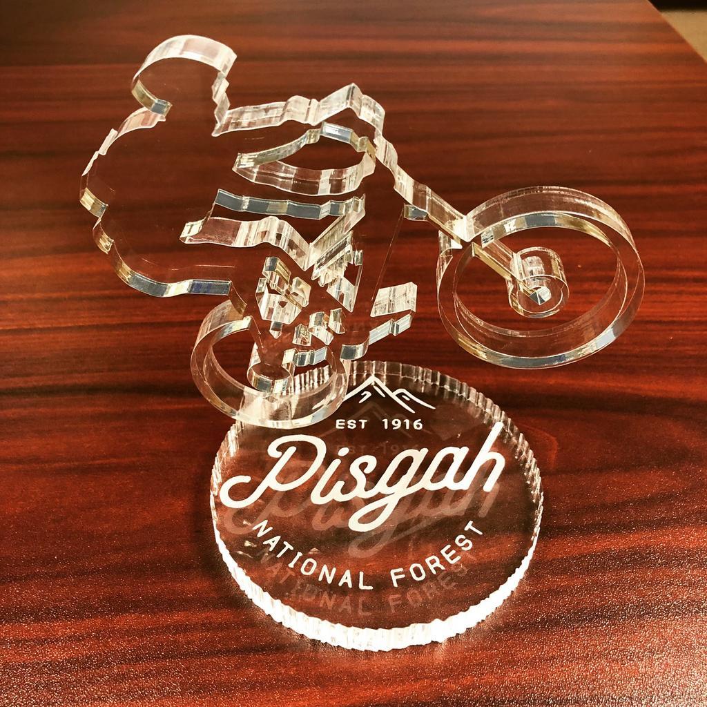 Show Us Your Mtn Biking Art!-img_0300.jpg