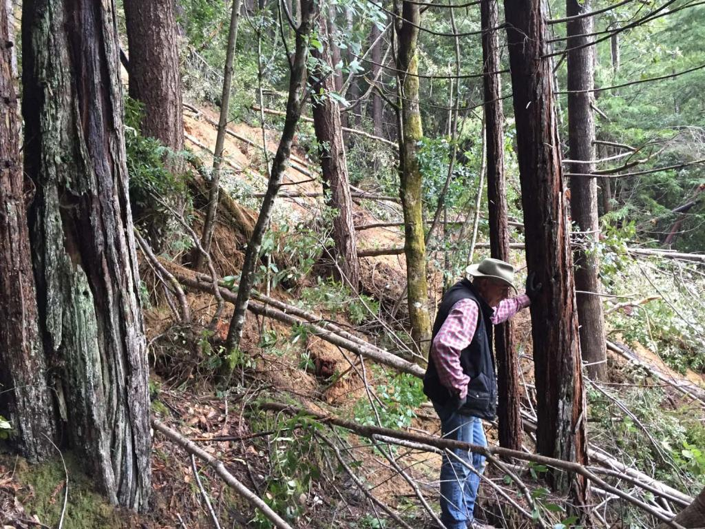 Photo assignment: Trail and land destruction in NorCal.-img_0314.jpg