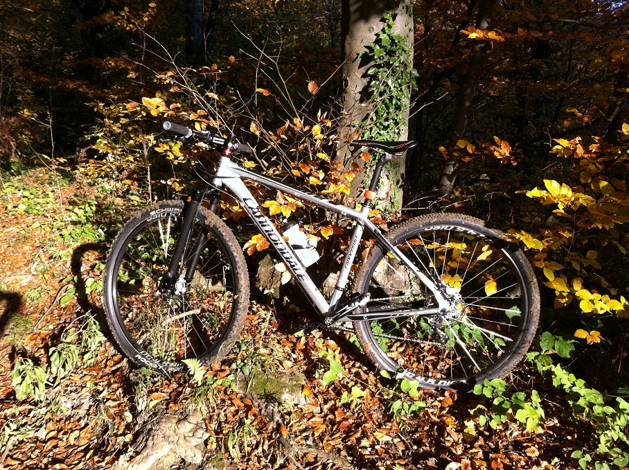 29ers In The Fall-img_0327.jpg