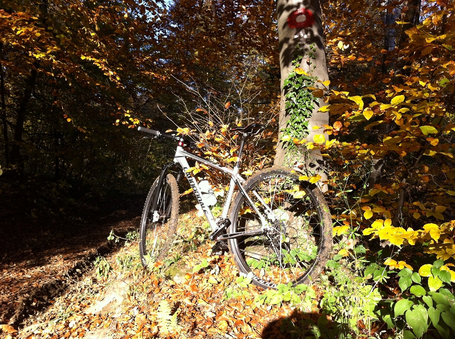 29ers In The Fall-img_0328.jpg