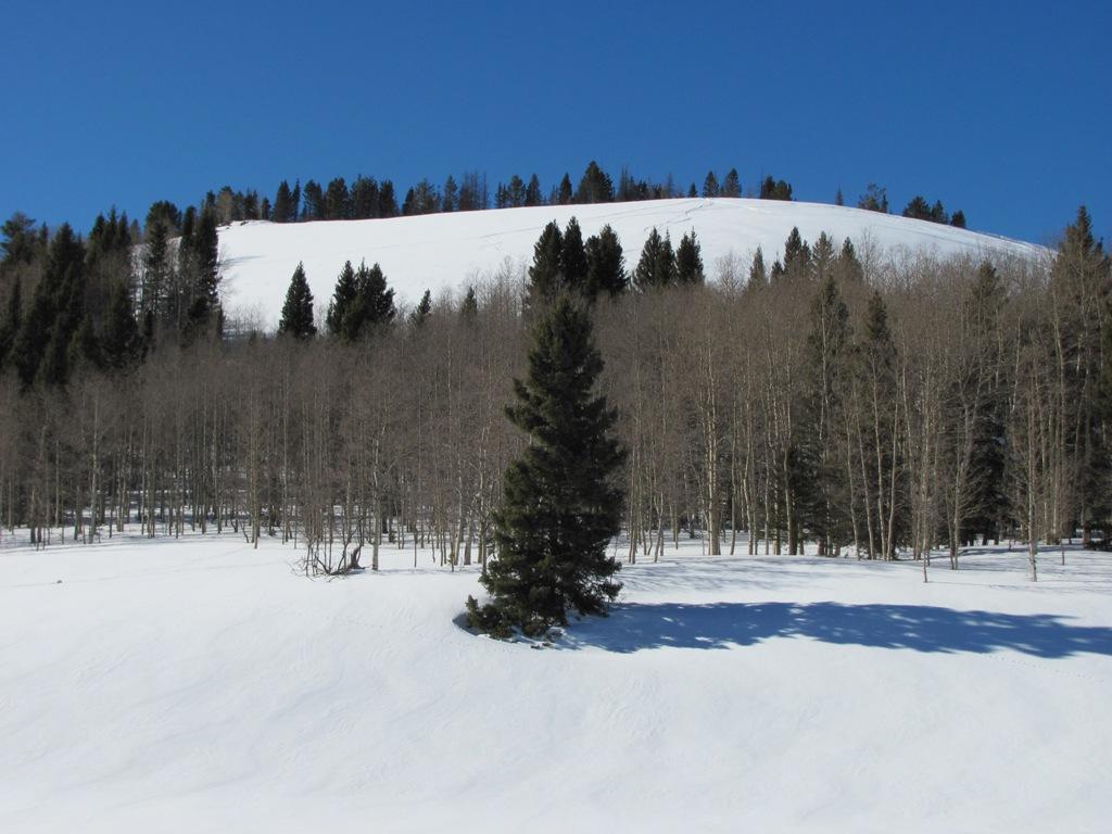 Ski or MTB?!?!  Tough Choices-img_0329-web.jpg
