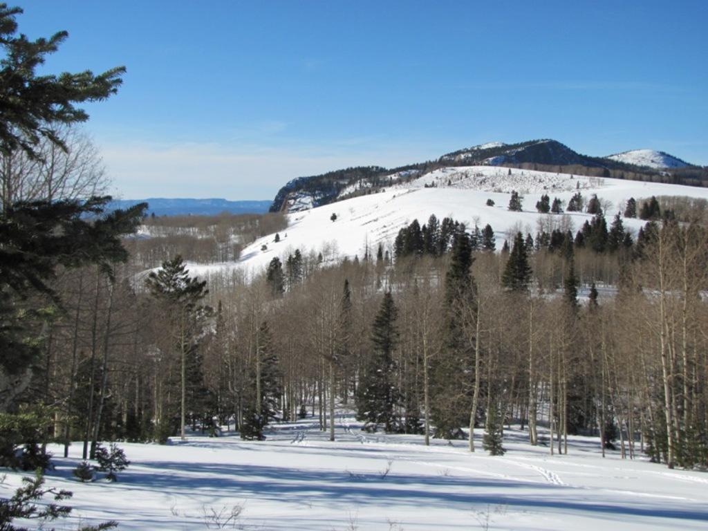 Ski or MTB?!?!  Tough Choices-img_0333-web.jpg