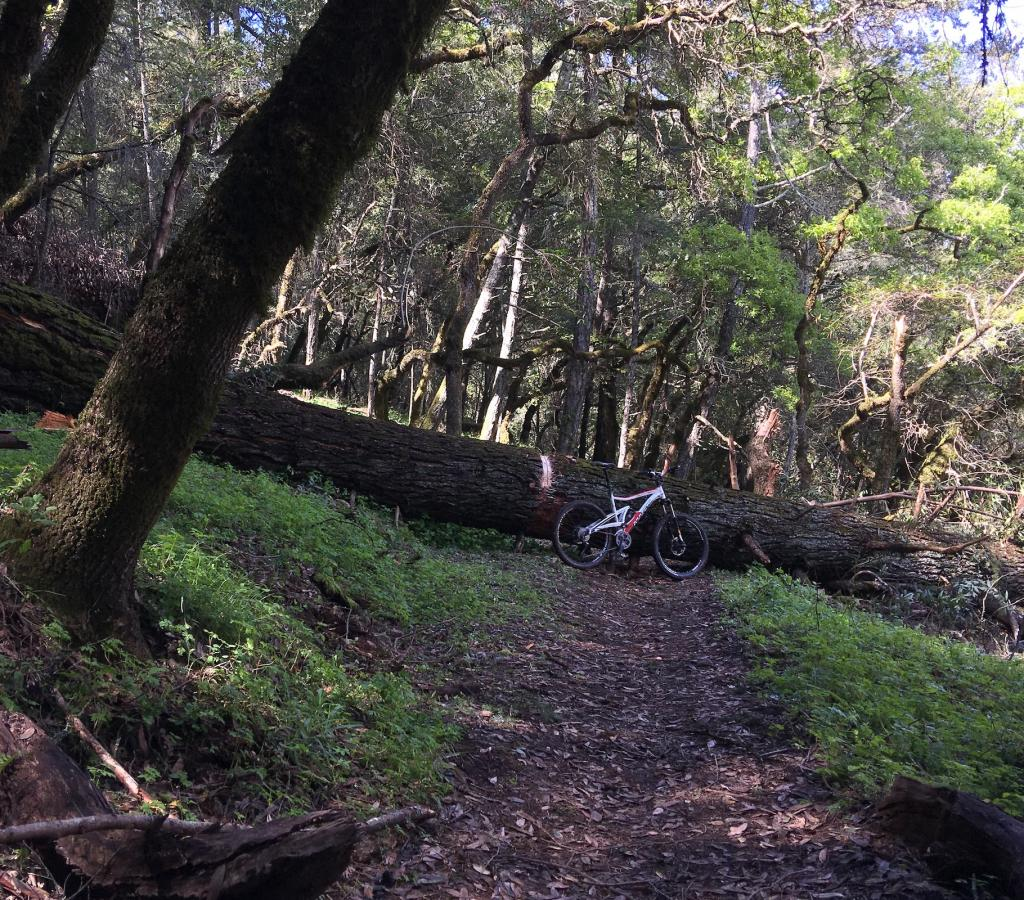 Annadel conditions update-img_0340.jpg