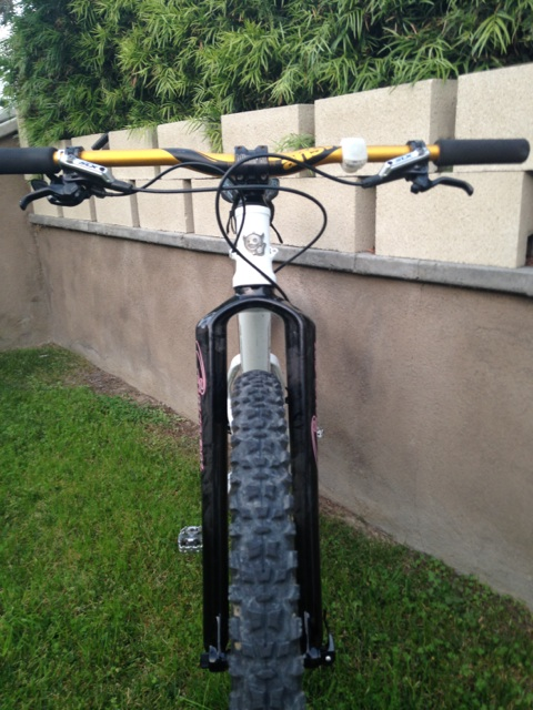 Carver Bikes Carbon 29 Tapered Mountain Disc Fork 490mm with 15mm Thru Axle