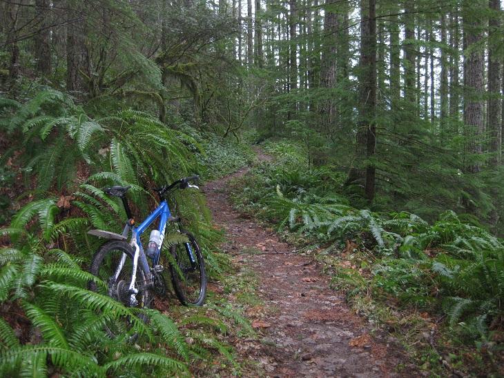 monument peak trail-img_0347.jpg