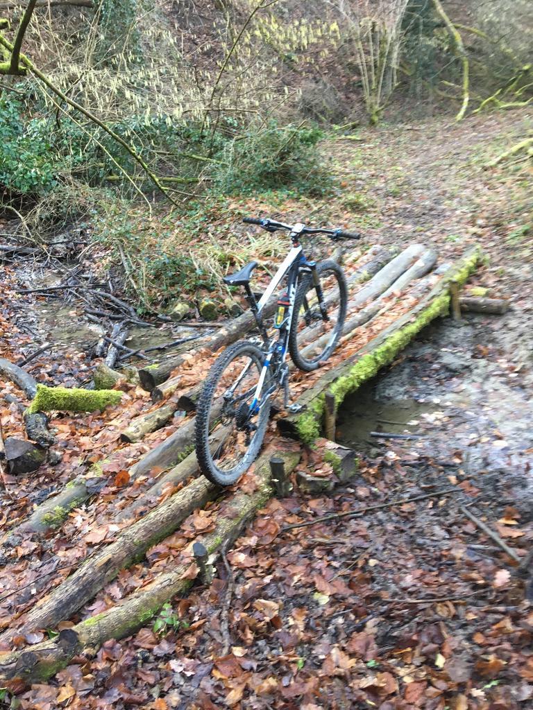 bike +  bridge pics-img_0358.jpg