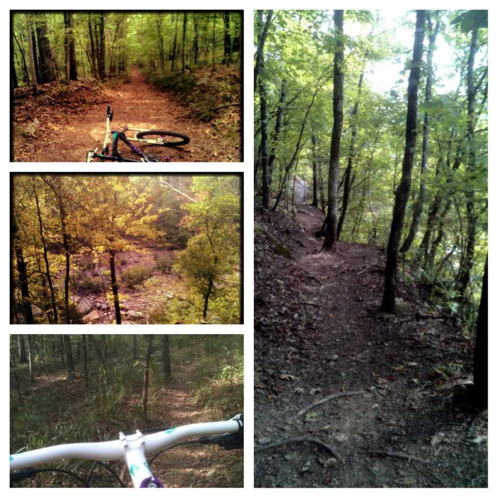 What did You do today on your mountain bike?-img_0375.jpg