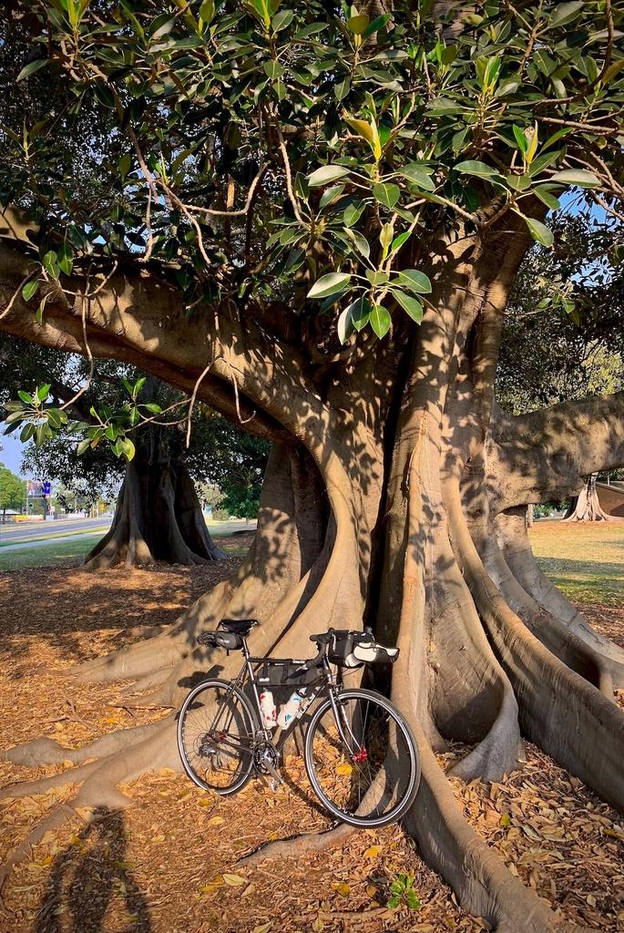 Fat Biking and health-img_0379.jpg