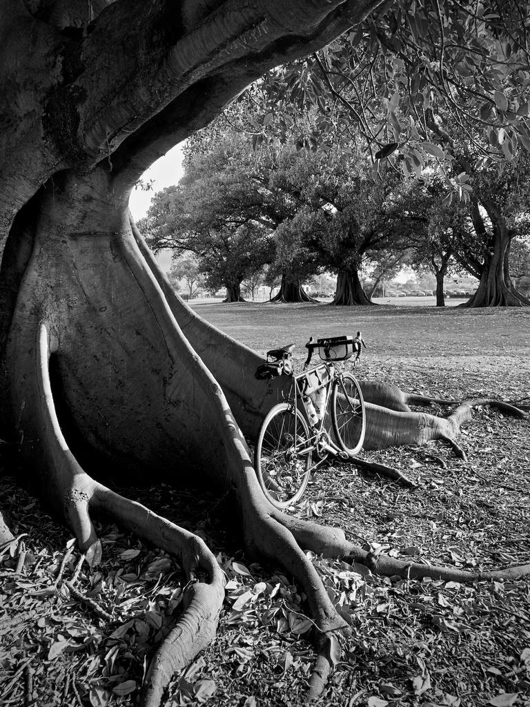 Fat Biking and health-img_0385.jpg