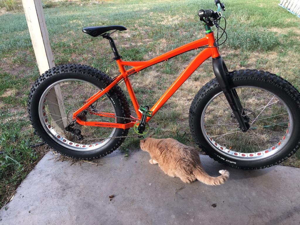 "RSD Bikes ""The Mayor""-img_0386.jpg"