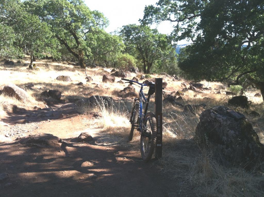 Bike + trail marker pics-img_0432a.jpg