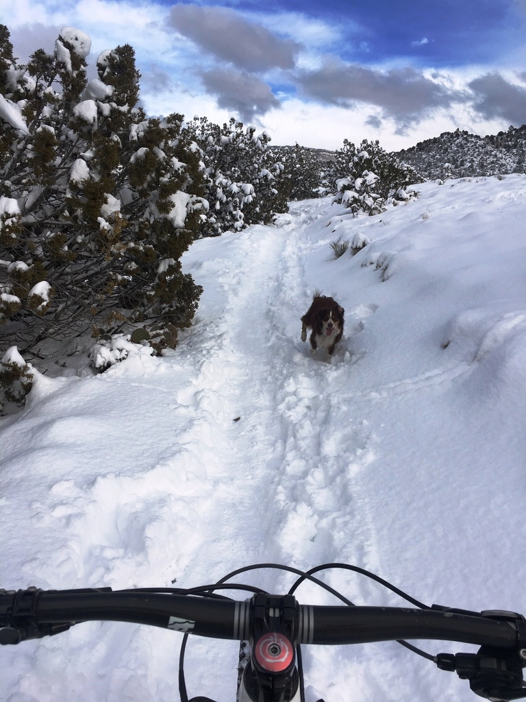 The NM Trail Pix Thread-img_0436.jpg