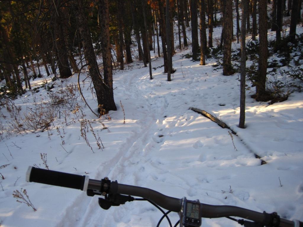 Why ski?-img_0440.jpg