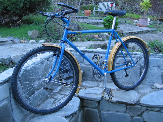 Resurrecting Pic Friday, Just for the Helluvit. Ritchey Content-img_0491.jpg