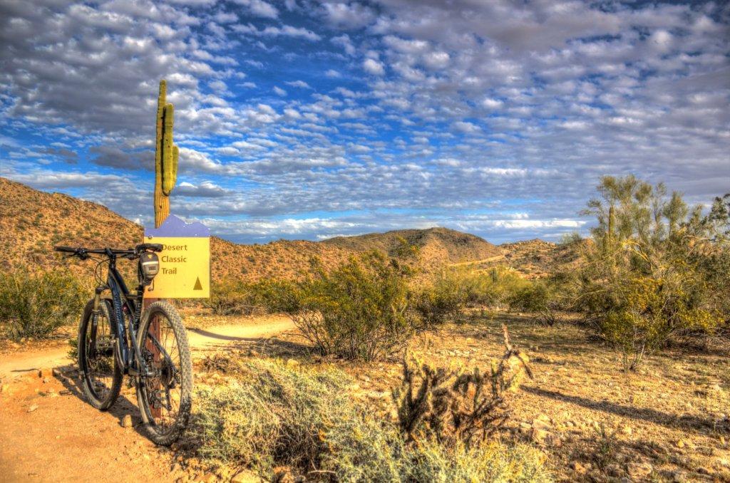 Bike + trail marker pics-img_0491-large-.jpg