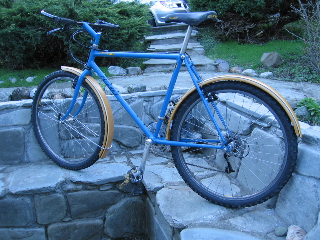 Resurrecting Pic Friday, Just for the Helluvit. Ritchey Content-img_0492.jpg