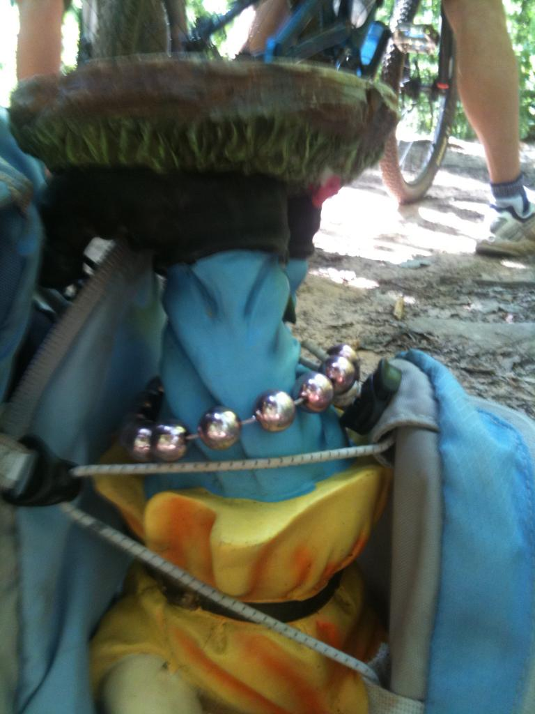 Adventures with the Pisgah Gnome-img_0533.jpg