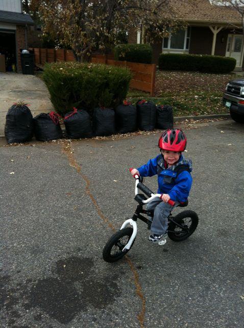 Kids bike gallery-img_0546.jpg