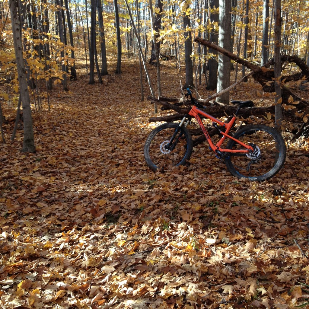 Local Trail Rides-img_0602.jpg