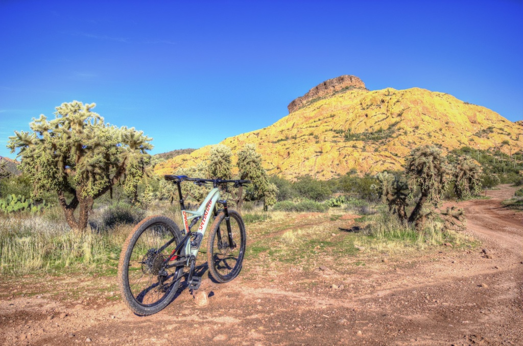 did you ride today?-img_0603_4_5-large-.jpg